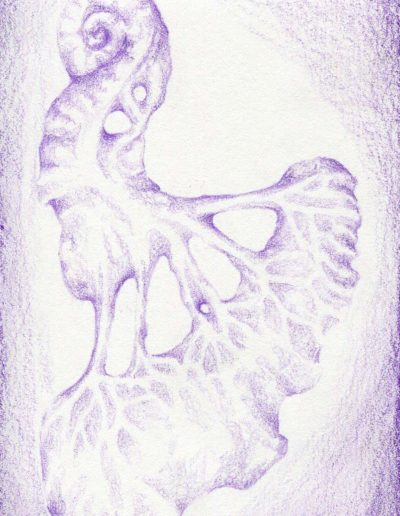 organic form: kidney