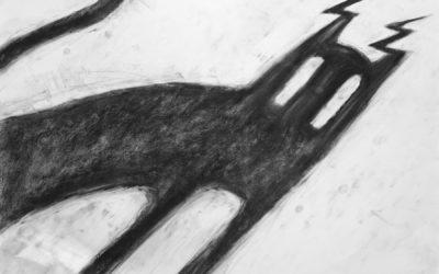 the shadow of lightning cat